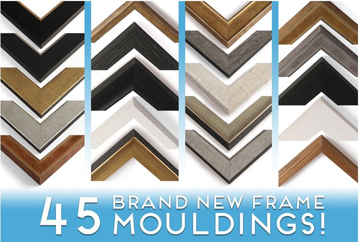 One Vision Imaging New Frame Mouldings